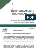 Comp Organizacional