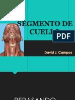 Cuello - Clase 1