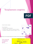 Toxoplasma , Mas