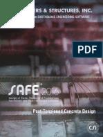 Safe Pt Design