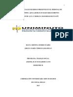 TTS_OsorioSuarezDianaCristina_2013.pdf