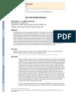 The Prefronal Cortex and Flexible Behavior