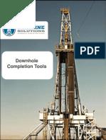 295060092-Wireline-Completion-Tools.pdf