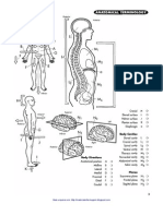 Livro - Anatomy Coloring Workbook
