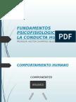 2da Clase Fundamentos Neurofisiologicoa de La Conducta Humana