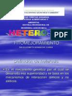 HETEROSIS.ppt