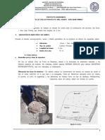 Proyecto Academico I-2011