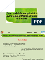 Role of Micro-Nutrients