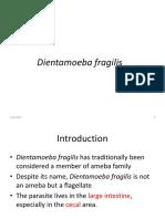 Luminal Flagellates