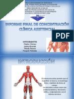 Diapositivas Sistema Muscular Completas