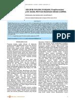 11-25-1-SM.pdf