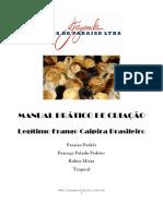 manual_paraiso_pedres.pdf
