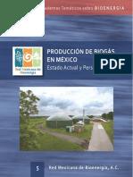 PRODUCCION DE BIOGAS EN MEXICO LIBRO.pdf