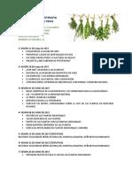 Cronograma Taller de Fitoterapia Programa Prais