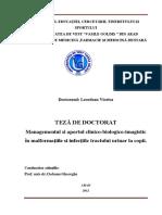 Rezumat_teza_de_doctorat_Viorica_Leordean.pdf