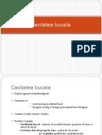 Cavitatea Bucala Tm