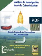 7ManejoIntegradodeBarrenadores.pdf