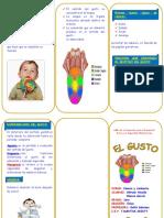 173083894-triptico-gisuto.doc