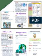 Pf. Teorias Del Desarrollo - Triptico