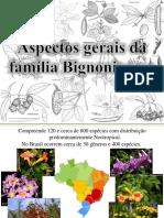 Aspectos gerais da família Bignoniaceae