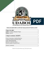 APA SALARIO final.pdf