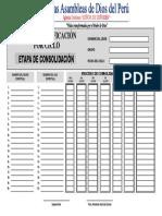 PDF - Etapa de Consolidacion-Argentina