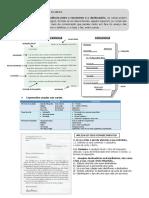 Carta_copia.pdf