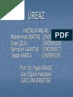 dosya-ureaz.pdf