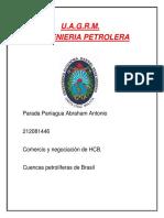 Cuencas Brasil