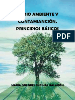 Medio Ambiente y Contaminación. Principios básicos.pdf