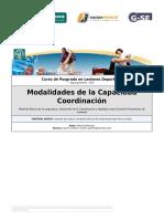 4 Modalidades de La Capacidad Coordinación