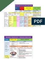 procesos-didacticos