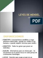 07 Leyes de Mendel