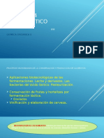 AcidoLactico