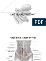 Maternal Anatomy.pptx