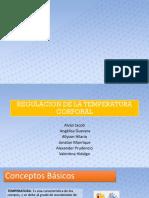 Termorregulacion Presentacion ppt