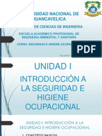 UNH - UNIDAD I - SHO.pdf