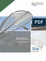 Dynamique SCIA 11