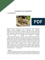 Print Monotremata Dan Marsupilia