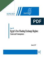 Egypt's Free Floating Exchange Regime