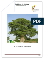 -PLAN SENEGAL EMERGENTPlan Sénégal Emergent VP.pdf