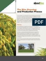 rice_growing.pdf