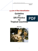 JSRI_Guideline0312