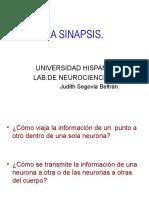 POTENCIAL DE ACCION YSINAPSIS.ppt