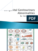 2 Congenital Genitourinary Abnormalities herman.pptx