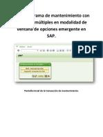 Crear Programa de Mantenimiento Con Opciones Múltiples en Modalidad de Ventana de Opciones Emergente en SAP