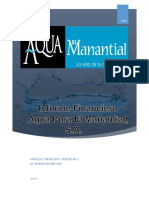 Informe Financiero El Manantial Final--