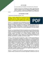 RioNegro(1993).pdf