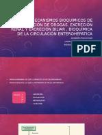 Mecanismos Bioquímicos de Excreción de Drogas