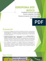 Hidroponia Dos Bosco